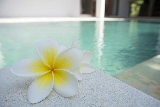 květy u bazénu